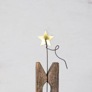 Oro Estrella M