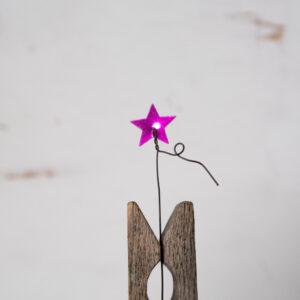 Fucsia Estrella M