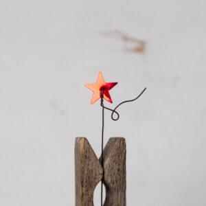 Roja Estrella M
